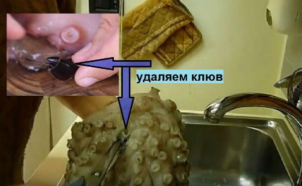 удаляем клюв у осьминога