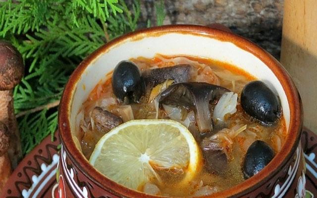 Солянка из грибов: рецепты с фото для легкого приготовления