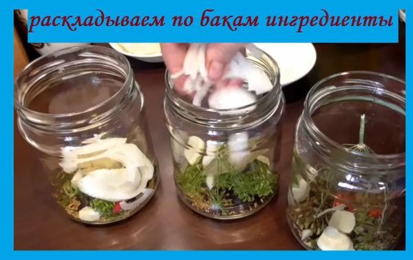 по-болгарски ингредиенты в банку