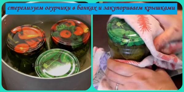 стерилизация огурчиков по-болгарски