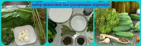 пряности для консервации