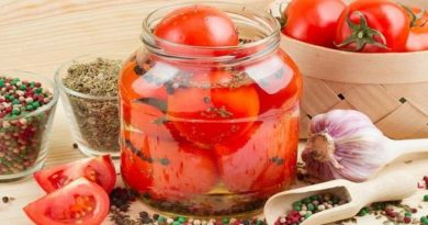 Помидоры на зиму – самые вкусные рецепты консервированных томатов