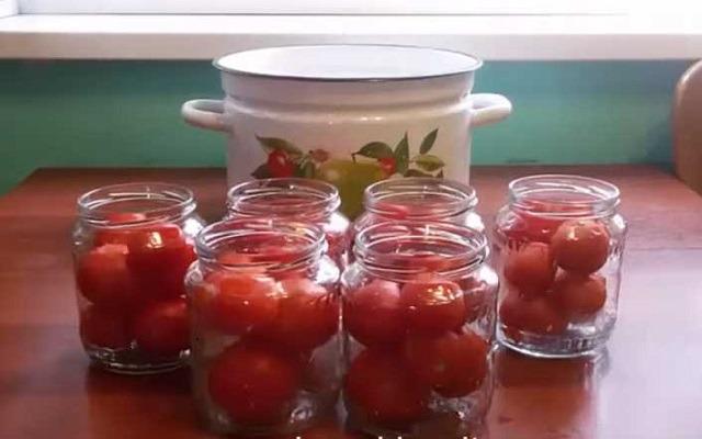 заложить томаты