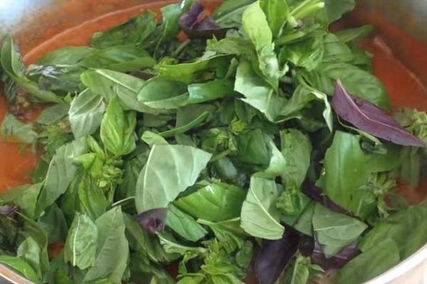 положить оборванные листья базилика