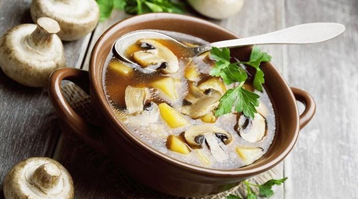 Грибной суп — простые рецепты приготовления супа из различных видов грибов