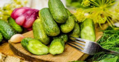 Классические рецепты малосольных хрустящих огурцов быстрого приготовления