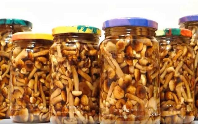 Классический рецепт маринованных опят