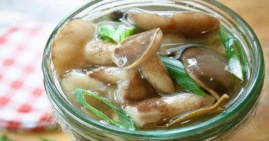 Как мариновать и солить маслята, рецепты заготовки очень вкусных грибов на зиму