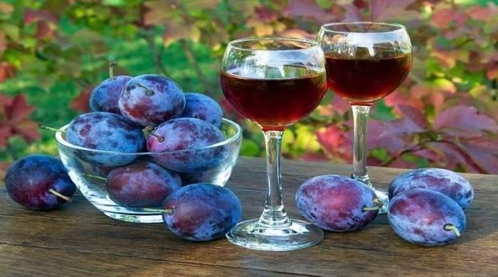 Простые пошаговые рецепты приготовления вкусного домашнего вина из слив